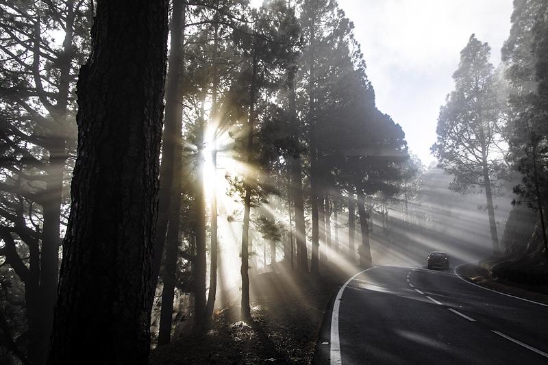 05.2.2012_Teide_129.jpg