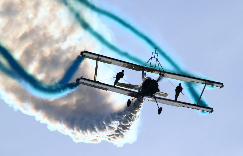 skycats_1.jpg.eb64487902545386401491b56c66c4aa.jpg