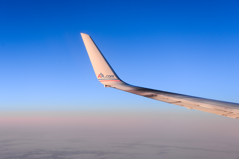 wing.jpg.e5a5f7c957b15539fea374418881d012.jpg