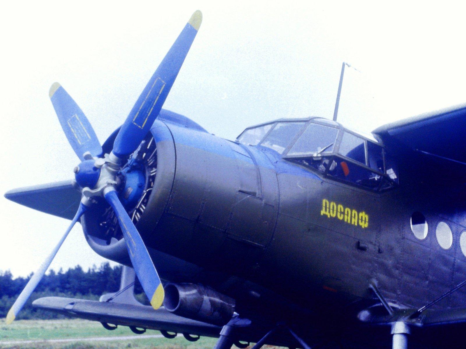 "Antonov An-2 DOSAAF ""67"" EFHN 1990"