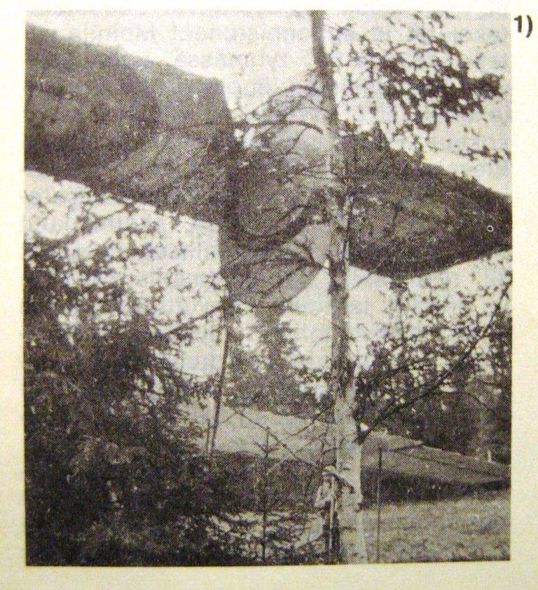 1919-06-08 Gurland Farman 32, Ilmailu 11.1969 pak.JPG