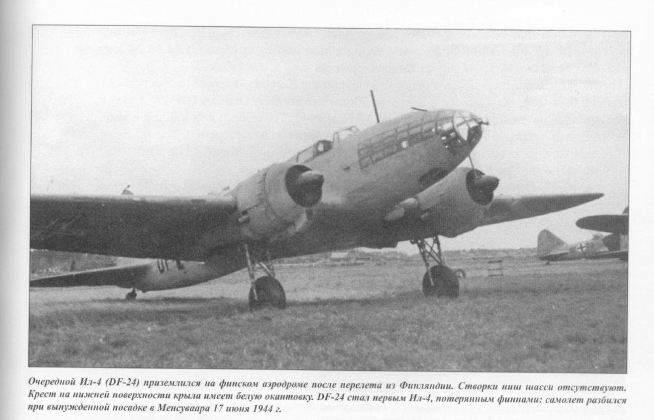 DF-24 keltainen.jpg