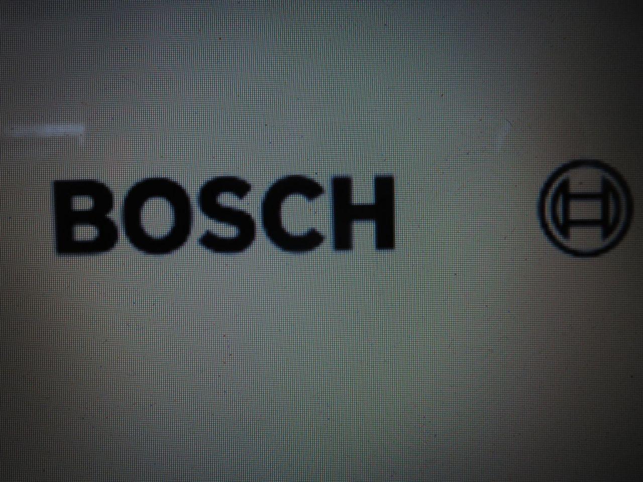 Bosch 2.JPG
