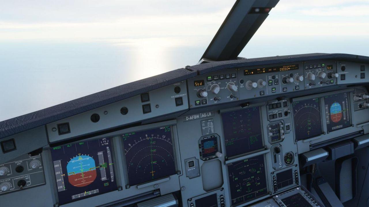 FlightSimulator 2021-03-19 09-46-22-15.jpg